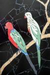 Mosaics Australian