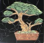 bonsai 2012